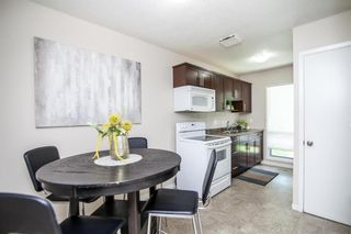 Photo 10: 27 Costello Drive in Winnipeg: Crestview Residential for sale (5H)  : MLS®# 202013357