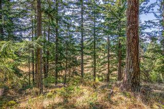 Photo 24: 390 Brookleigh Rd in : SW West Saanich Land for sale (Saanich West)  : MLS®# 883439