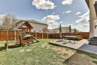 Photo 28: 2 CITADEL ESTATES Heights NW in Calgary: Citadel House for sale : MLS®# C4183849