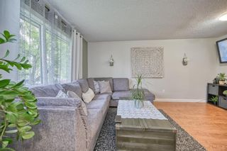 Photo 21: 39 Erin Green Way SE in Calgary: Erin Woods Detached for sale : MLS®# A1118796