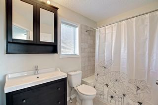 Photo 18: 135 Country Hills Heights in Calgary: Country Hills Detached for sale : MLS®# A1153171