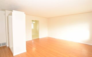 Photo 16: 13520 126 Street in Edmonton: Zone 01 House for sale : MLS®# E4227330
