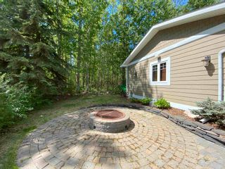 Photo 33: 143 CRYSTAL SPRINGS Drive: Rural Wetaskiwin County House for sale : MLS®# E4247412