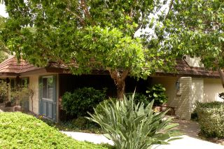 Photo 14: SAN DIEGO Condo for sale : 2 bedrooms : 4412 Collwood Ln