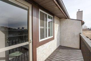 Photo 25: 6 17409 95 Street in Edmonton: Zone 28 Townhouse for sale : MLS®# E4234985