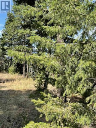 Photo 17: 1803 SOUTH LAKESIDE DRIVE in Williams Lake: Vacant Land for sale : MLS®# R2612495