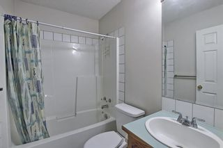Photo 26: 351 Applewood Drive SE in Calgary: Applewood Park Detached for sale : MLS®# A1094539