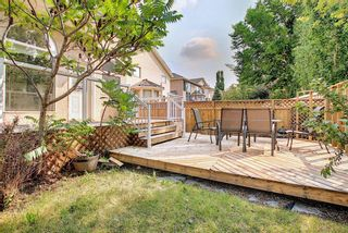 Photo 44: 31 Mt Norquay Gate SE in Calgary: McKenzie Lake Detached for sale : MLS®# A1126206