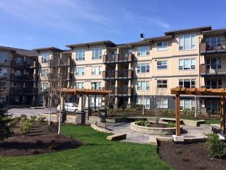 Main Photo: 120-2565 Campbell Ave in Abbotsford: Abbotsford East Condo for rent