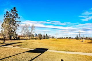Photo 38: 22 Lissington Drive SW in Calgary: North Glenmore Park Residential for sale : MLS®# A1066780