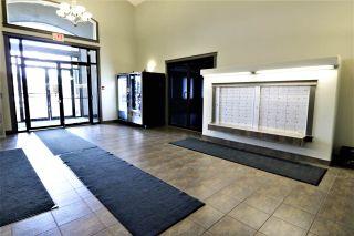 Photo 3: 415 111 EDWARDS Drive in Edmonton: Zone 53 Condo for sale : MLS®# E4243997
