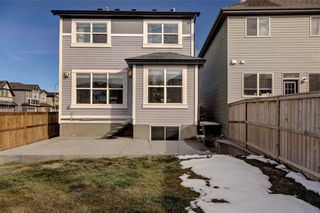 Photo 35: 5 CHAPARRAL VALLEY Crescent SE in Calgary: Chaparral Detached for sale : MLS®# C4232249