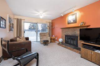 Photo 9: 20607 WESTFIELD Avenue in Maple Ridge: Southwest Maple Ridge House for sale : MLS®# R2541727