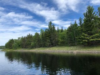 Photo 7: 2 Middle LK in Kenora: Vacant Land for sale : MLS®# TB212525