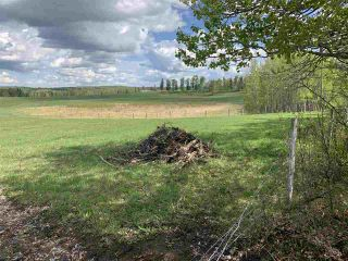 Photo 12: 53000 Range Road 73: Rural Parkland County Rural Land/Vacant Lot for sale : MLS®# E4202767