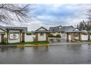 """Photo 1: 24 19649 53 Avenue in Langley: Langley City Townhouse for sale in """"Huntsfield Green"""" : MLS®# R2155558"""