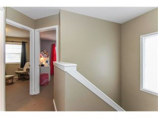 Photo 32: 230 CRANBERRY Close SE in Calgary: Cranston House for sale : MLS®# C4063122