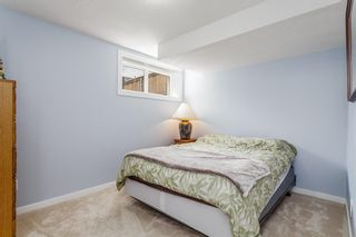 Photo 28: 163 EVANSBOROUGH Crescent NW in Calgary: Evanston Detached for sale : MLS®# A1012239