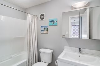 Photo 29: 508 Mckinnon Drive NE in Calgary: Mayland Heights Detached for sale : MLS®# A1154496