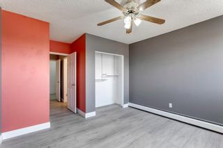 Photo 25: 211 7007 4A Street SW in Calgary: Kingsland Apartment for sale : MLS®# A1086391