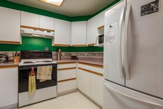 Photo 16: 303 738 Island Hwy in : CR Campbell River North Condo for sale (Campbell River)  : MLS®# 873187
