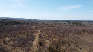 Photo 9: 8532 Trunk 4 Highway in Telford: 108-Rural Pictou County Vacant Land for sale (Northern Region)  : MLS®# 202108300