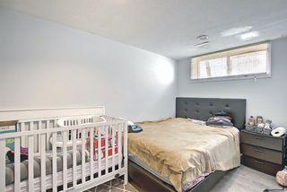 Photo 28: 455 Falconridge Crescent NE in Calgary: Falconridge Detached for sale : MLS®# A1103477