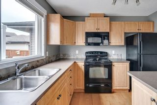 Photo 15: 217 CHAPARRAL VALLEY Drive SE in Calgary: Chaparral Semi Detached for sale : MLS®# A1119212