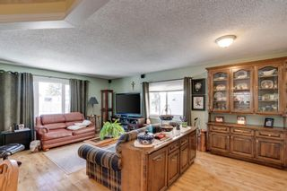 Photo 4: 10 Abalone Crescent NE in Calgary: Abbeydale Detached for sale : MLS®# A1072255