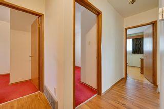 Photo 22: 7228 131A Avenue in Edmonton: Zone 02 House for sale : MLS®# E4265805