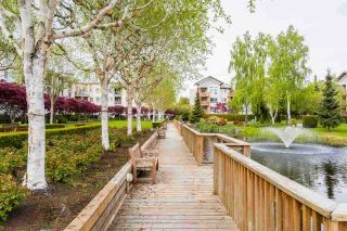 """Photo 17: 330 5500 ANDREWS Road in Richmond: Steveston South Condo for sale in """"SOUTHWATER"""" : MLS®# R2163811"""