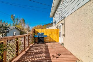 Photo 38: 2923 Doverville Crescent SE in Calgary: Dover Semi Detached for sale : MLS®# A1146625