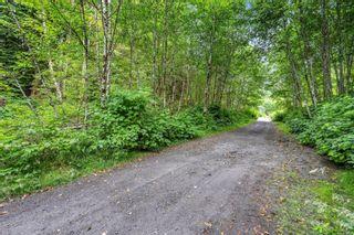 Photo 33: 16706 Parkinson Rd in Port Renfrew: Sk Port Renfrew Land for sale (Sooke)  : MLS®# 882036