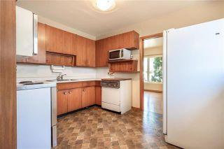 Photo 10: 91 Verbena Street in Winnipeg: Garden City Residential for sale (4G)  : MLS®# 1919284