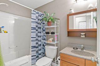 Photo 10: 4821B 50 Avenue: Cold Lake House Half Duplex for sale : MLS®# E4207555