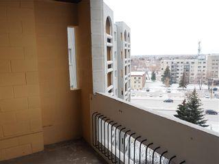 Photo 11: 810 3000 Pembina Highway in Winnipeg: Fort Richmond Condominium for sale (1K)  : MLS®# 1930672