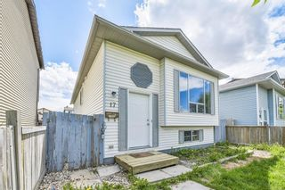 Photo 22: 17 MARTINDALE Boulevard NE in Calgary: Martindale House for sale : MLS®# C4121854