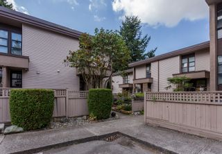 """Photo 29: 49 13809 102 Avenue in Surrey: Whalley Townhouse for sale in """"The Meadows"""" (North Surrey)  : MLS®# F1447952"""