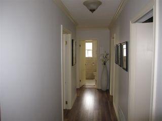 Photo 16: 11981 248 Street in Maple Ridge: Cottonwood MR House for sale : MLS®# R2165177
