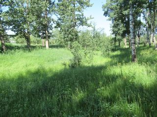 Photo 15: 4137 Township Road  350: Rural Red Deer County Detached for sale : MLS®# A1127298