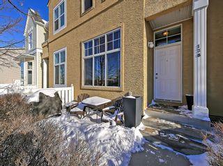 Photo 28: 138 PROMENADE Way SE in Calgary: McKenzie Towne Row/Townhouse for sale : MLS®# C4228502