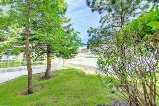 Photo 4: 1113 11 Chaparral Ridge Drive SE in Calgary: Chaparral Apartment for sale : MLS®# A1145437