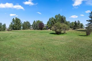 Photo 46: 291114 Twp Rd 270 SE: Airdrie Detached for sale : MLS®# A1136606