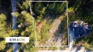 "Photo 5: 12905 246 Street in Maple Ridge: Websters Corners Land for sale in ""Allco Park"" : MLS®# R2576635"