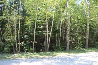 Photo 4: Lot 87 Otter Point Road in East Chester: 405-Lunenburg County Vacant Land for sale (South Shore)  : MLS®# 202103581