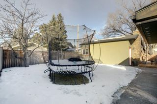 Photo 42: 2607 Laurel Crescent SW in Calgary: Lakeview Detached for sale : MLS®# A1065350