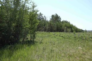 Photo 10: TWP 494 RR 42: Rural Leduc County Rural Land/Vacant Lot for sale : MLS®# E4252228