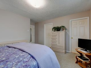 Photo 17: 3908 Lianne Pl in : SW Strawberry Vale House for sale (Saanich West)  : MLS®# 875878