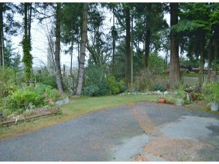 Photo 4: 2800 BAYVIEW Street in Surrey: Crescent Bch Ocean Pk. House for sale (South Surrey White Rock)  : MLS®# F1327230