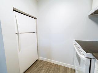 Photo 28: 9835 74 Street in Edmonton: Zone 19 House for sale : MLS®# E4248699